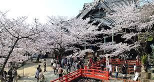 「三井寺」の画像検索結果