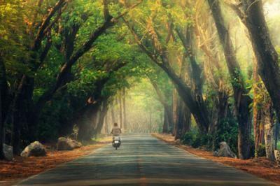 Διαδρομή στην φύση
