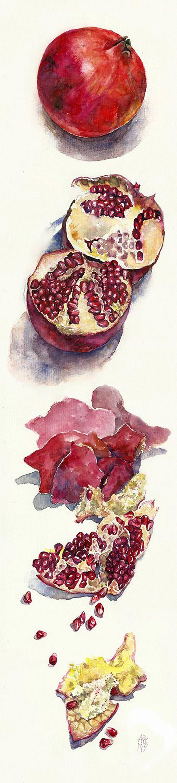 """Pomegranate"" - Ayjaja, watercolor {contemporary artist fruit still life painting} ayjaja.deviantart.com"