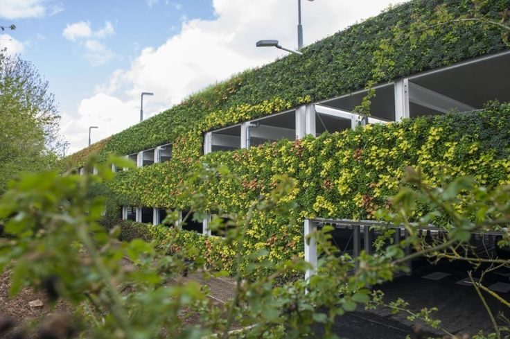 The latest company to claim Europe's largest living wall, National Grid commissioned One World Design to build a sanctuary for local pollinators, birds and insects