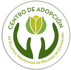 Jardín Botánico UNAM, adopcion de plantas <3