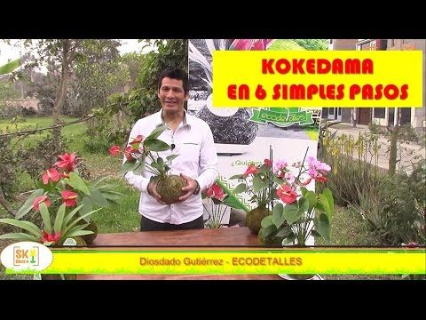 SK Vivero. Como hacer una KOKEDAMA. - YouTube