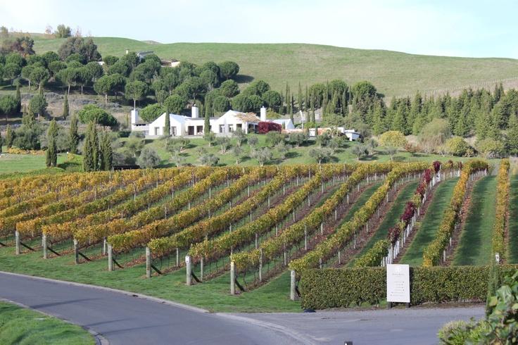 Black barn winery in Hawke's bay New Zealand
