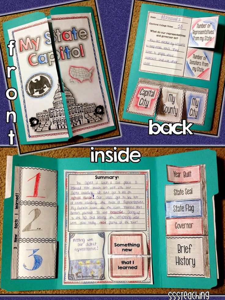 46 best 4th grade social studies images on pinterest fourth calling all 4th grade teachersate capitol lapbook sciox Image collections