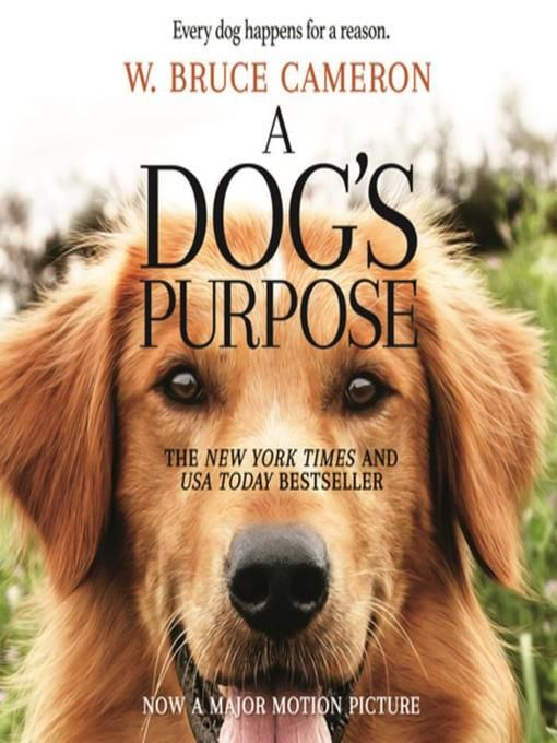 A Dog's Purpose—which spent a year on the New York Times Best Seller list—is heading to the big screen! Based on the beloved bestselling novel by W. Bruce Cameron, A Dog's Purpose, from director Lasse Hallström (The Cider House Rules, Dear John, The 100-Foot Journey), shares the soulful ...
