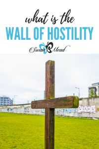 The Wall of Hostility? Jesus tore done the wall, inviting us in. Forever https://susanbmead.com/wall-of-hostility/