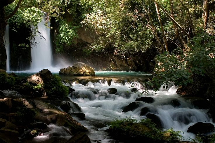 Banias Stream in Northern Israel...