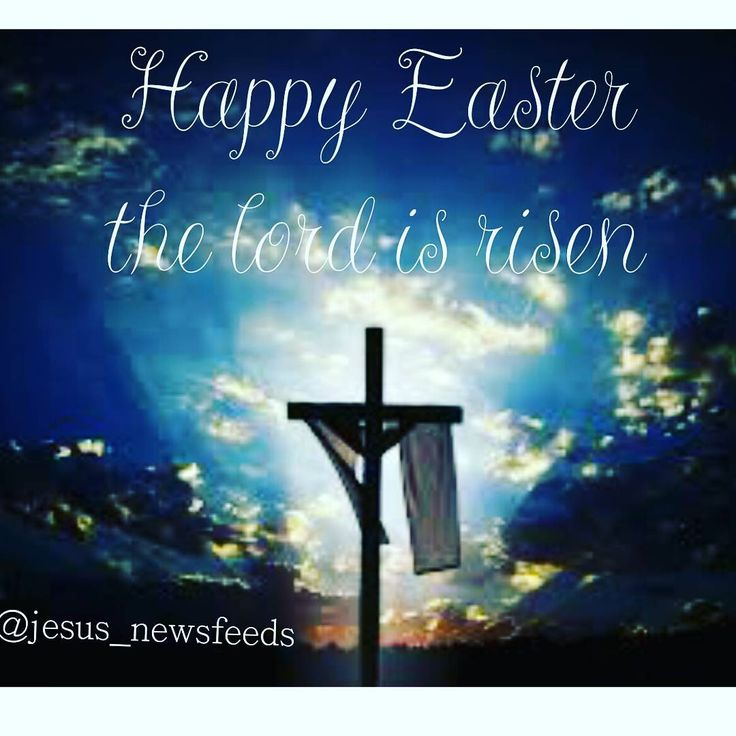 Happy easter to all who believe that he is risen ���� #happyeaster#bunny#lord#risen#livinggod#jesus#christ#wishingyou#all#godslove#godsword#deargod#prayer#appreciationpost#thankyoulord#godquotes#god#divinelord #divinehealer#godtherock #godisgreat #lordgod #jesusquotes#jesuslove http://quotags.net/ipost/1493727941464217511/?code=BS6yaYODNen