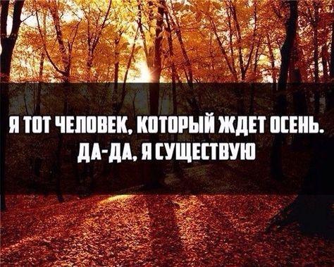Цитаты и картинки про осень | Цитаты, Осенние картинки ...