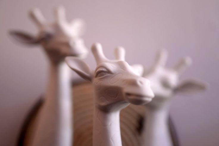 Small Giraffe via Casa do Arco . Click on the image to see more!