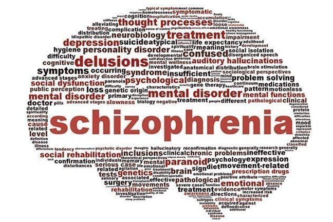 what is catatonic schizophrenia pdf