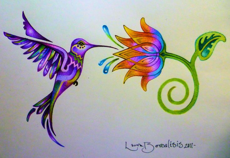 Hummingbird Tattoo Designs For Girls | colibri y la flor del arco iri hummingbird tattoo