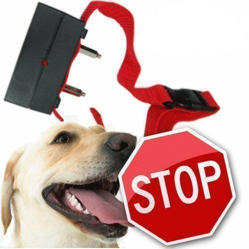 ForTech Pet Training Stop Barking No Bark Control Collar Auto Static Shock - http://petproduct.reviewsbrand.com/fortech-pet-training-stop-barking-no-bark-control-collar-auto-static-shock.html
