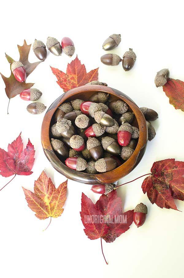 Painted Acorns - how to preserve and spray paint acorns for fall decorating     unOriginalMom.com