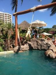 Image result for rope swing pool