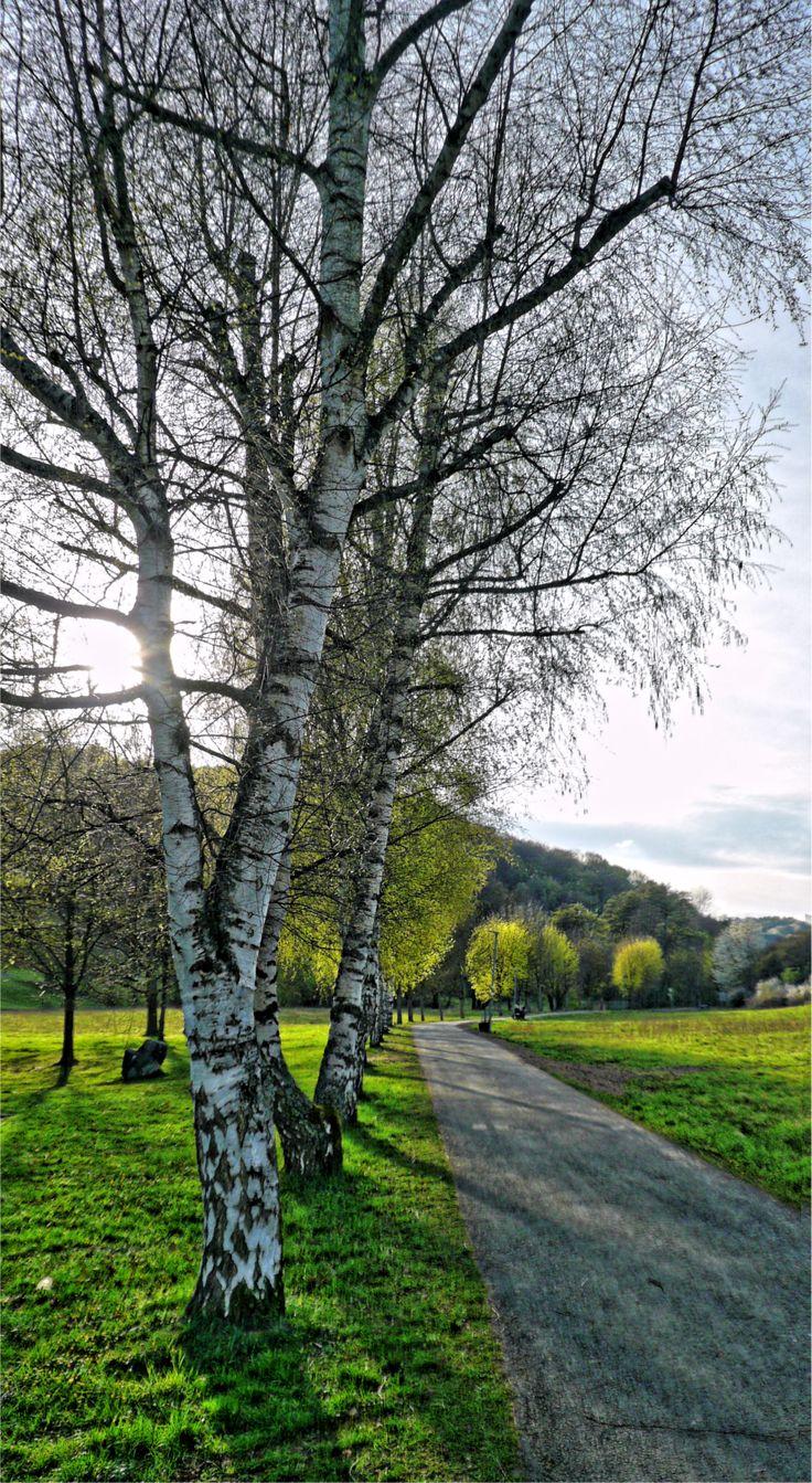 Bad Endbach, Wiesenweg