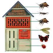 insectenhotel bouwtekening - Google zoeken