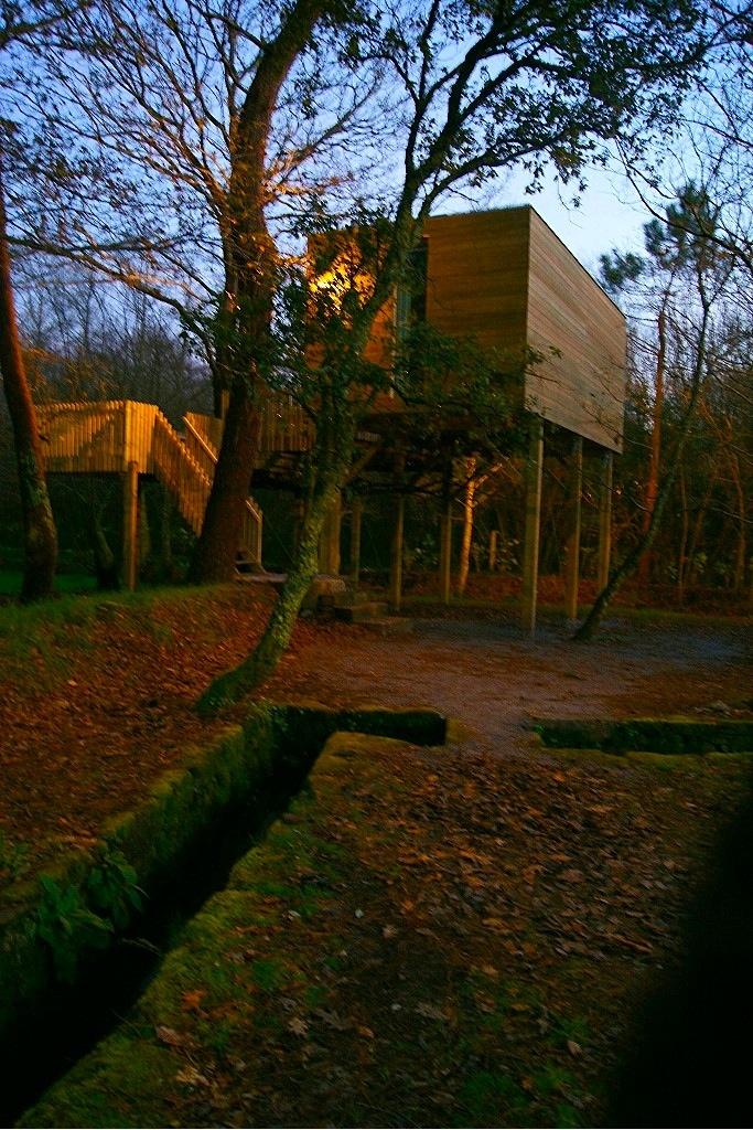 Mejores 51 im genes de cabani as do bosque en pinterest for Alojamientos cabanas en los arboles