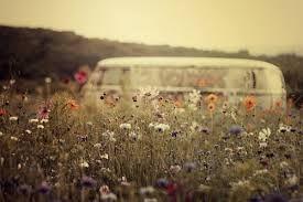 Hippie Van in the Grass