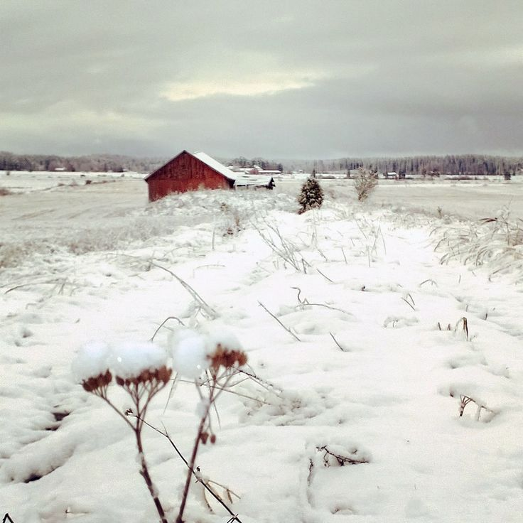 Countryside in Finland /Akaa