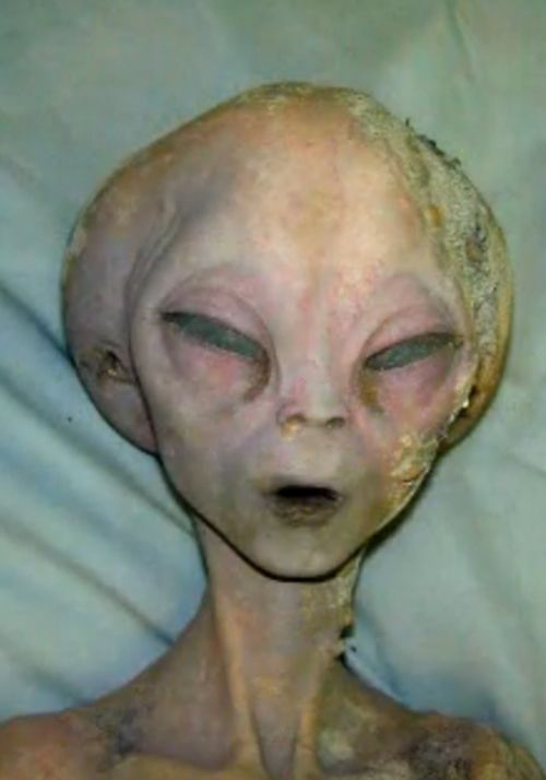 Alien, not human, descended from Nephilim of the fallen angels and human woman. Don't be deceived.