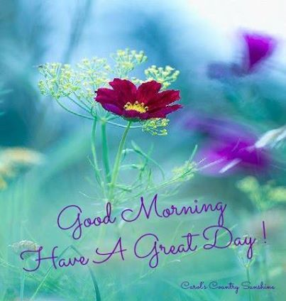 <3  Good Morning~Hi Girls~In The Hospital,Getting Some IV Fluids And Antibiotics~Should Be Out In A Couple Days~Love And Miss Each Of You~Kim Stanley