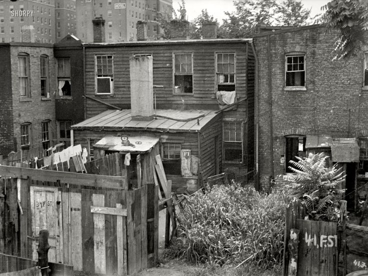 "September 1935. Washington, D.C. ""Negro back yards near Capitol."" A back alley view of some F Street tenements that are an interesting mix of appalling and appealing. 35mm nitrate negative by Carl Mydans."