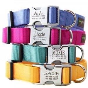 keeps pets from chewing on their tags.: Personalized Dogs Collars, Names Tags, Jingle Tags, Color, Pet, Personalized Dog Collars, Cute Ideas, Great Ideas, Dogs Tags