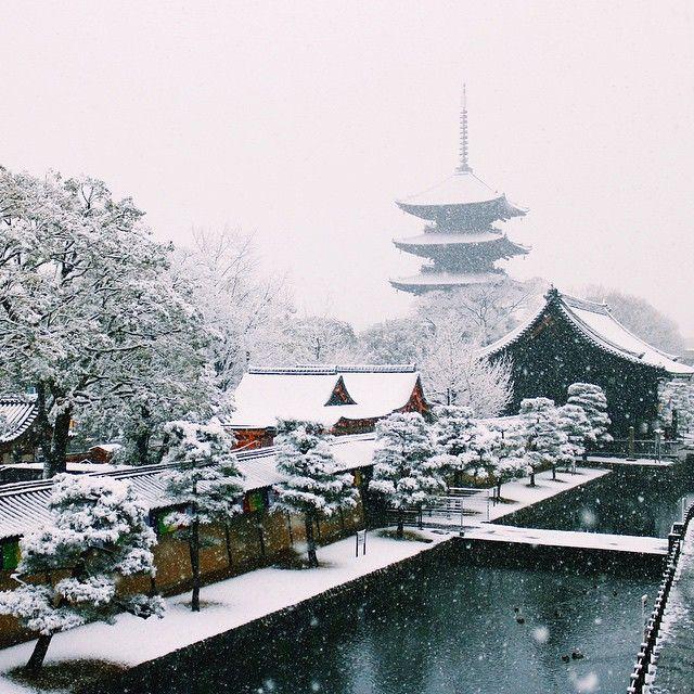 こんな雪景色の東寺は初めて見ました。