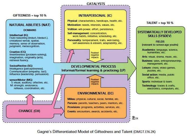 Gagn Model For Gifted And Talented Design Based Research Pinterest Models