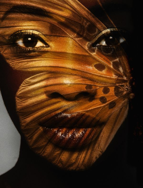 CamouflageBrown Butterflies, Beautiful Butterflies, Face, Black Butterflies, Makeup, Art, Brown Skin, Carsten Witte, Butterflies Beautiful