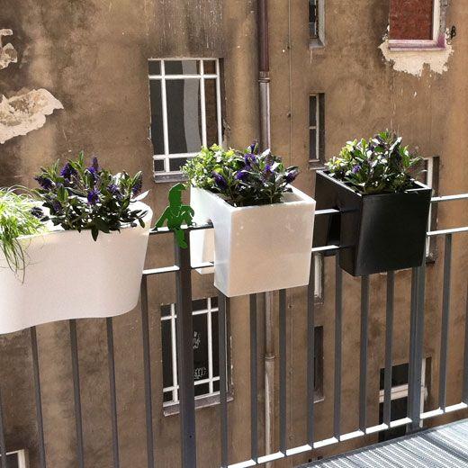 ber ideen zu blumenk sten bepflanzen auf pinterest blumenkasten fenster. Black Bedroom Furniture Sets. Home Design Ideas