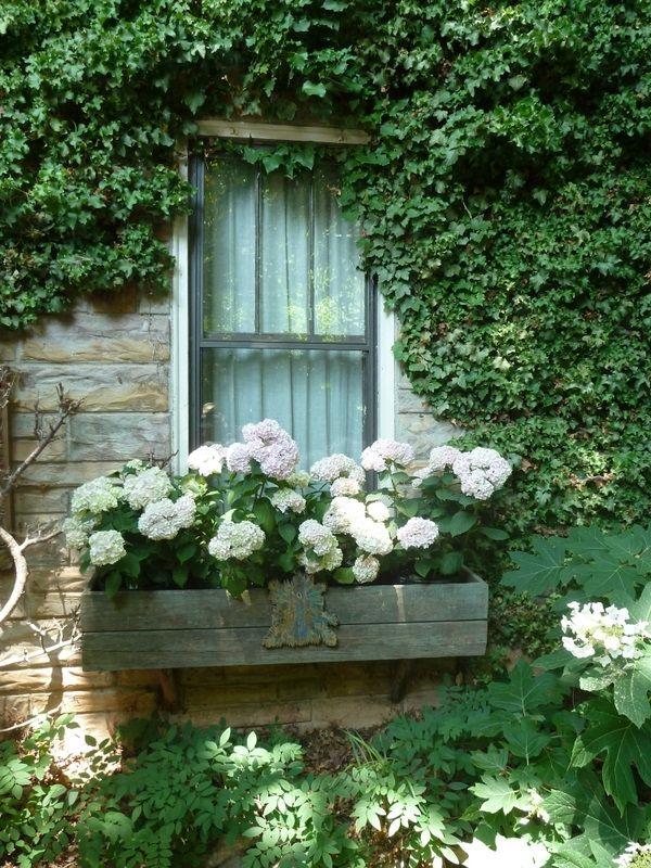 Art Beautiful white window box, stone house garden
