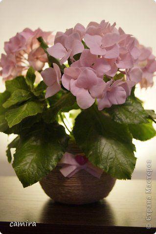 Флористика Лепка Гортензия холодный фарфор Фарфор холодный фото 1