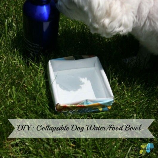 Water Rover Portable Pet Bowl: 25+ Best Ideas About Dog Water Bowls On Pinterest