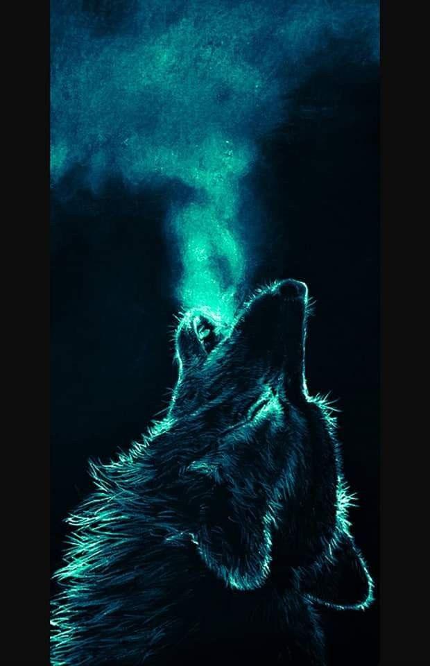 Epingle Par Old Black Wolf Sur Album Aleatorio 24 Black Wolf Let S Hunt Images Fond D Ecran Loup Dessin De Loup Dessin De Loups