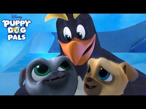Waddle Waddle Waddle Music Video Puppy Dog Pals Disney Junior