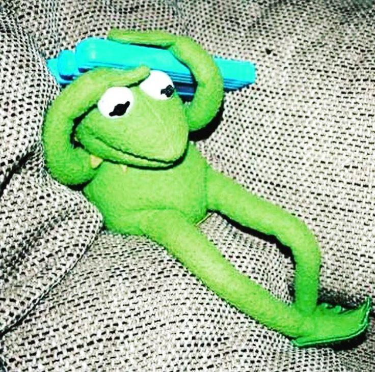 21 Best Muppet Love Images On Pinterest: 47 Best Hi Ho, Kermit The Frog Here Images On Pinterest