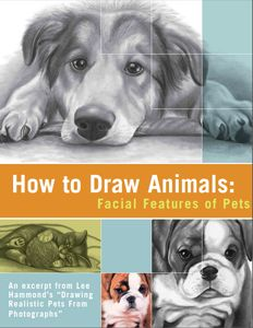 Claim your FREE Digital Download on How to Draw Animals Today!