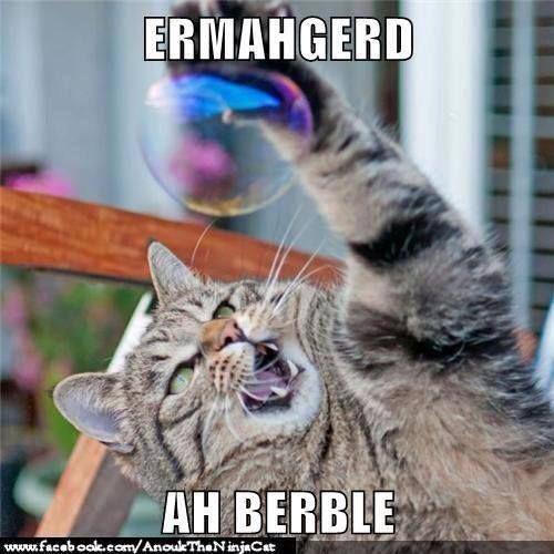 Ermahgerd!Hahaha I'm dying!!!! | Humor | Pinterest | Haha ...