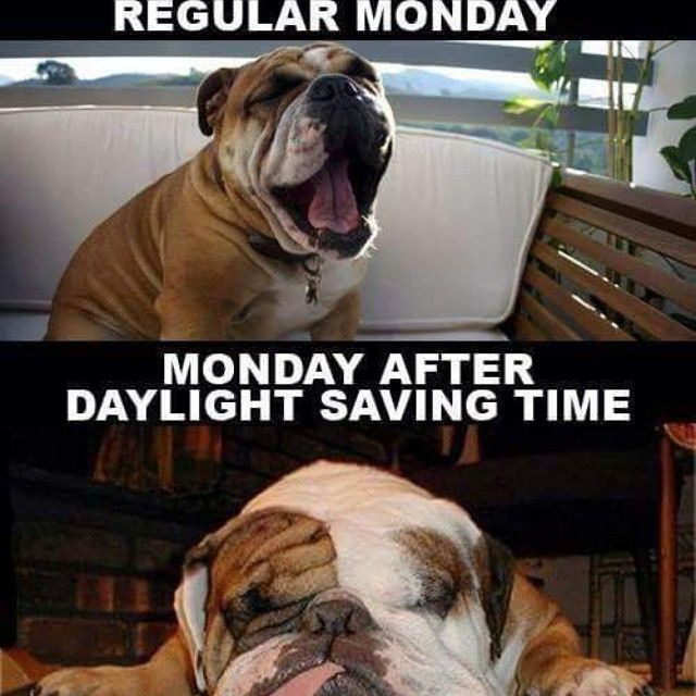 You've never hated Monday as much as you do today.