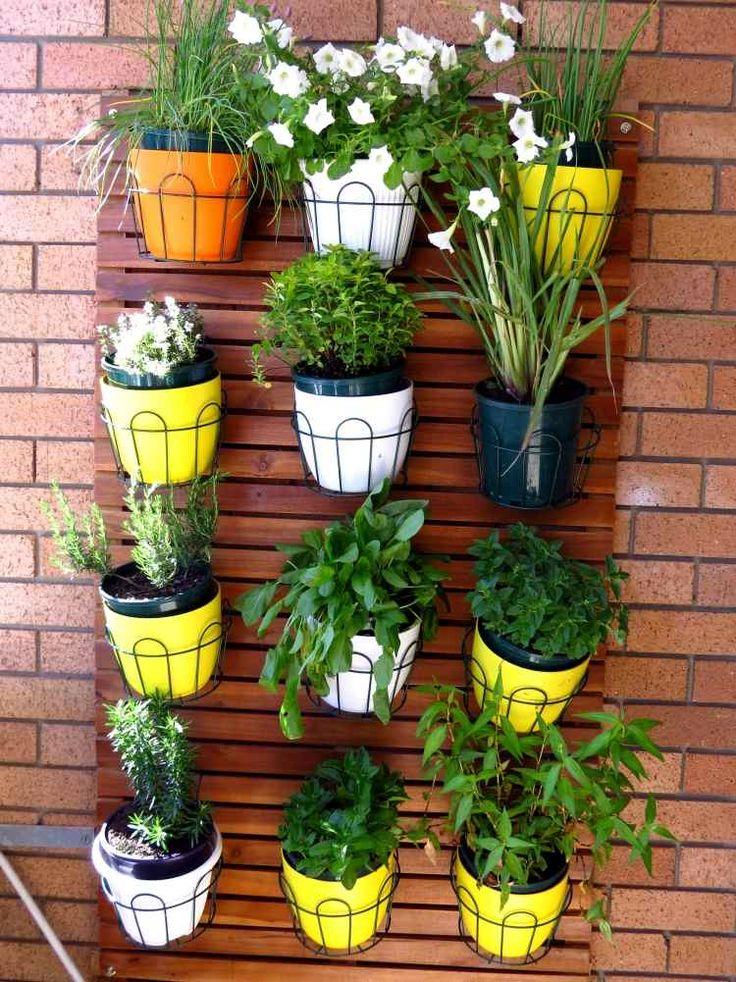 Les 9 meilleures images propos de loggia sur pinterest for Belle plante exterieur