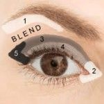 Where to apply eye shadow