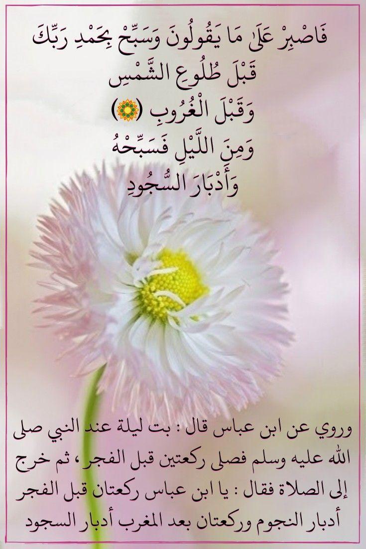 قرآن كريم آية فاصبر على ما يقولون Quran Islam