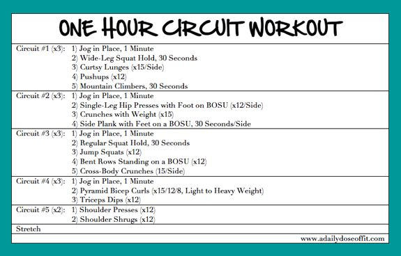 A Daily Dose Of Fit: One Hour Circuit Workout