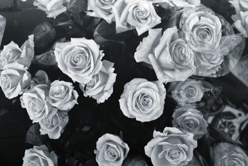 black and white hipster tumblr backgrounds   Google Search | Black