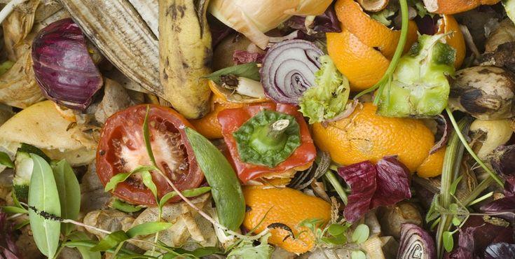 Conheça os materiais que pode usar na sua compostagem e os que deve evitar.