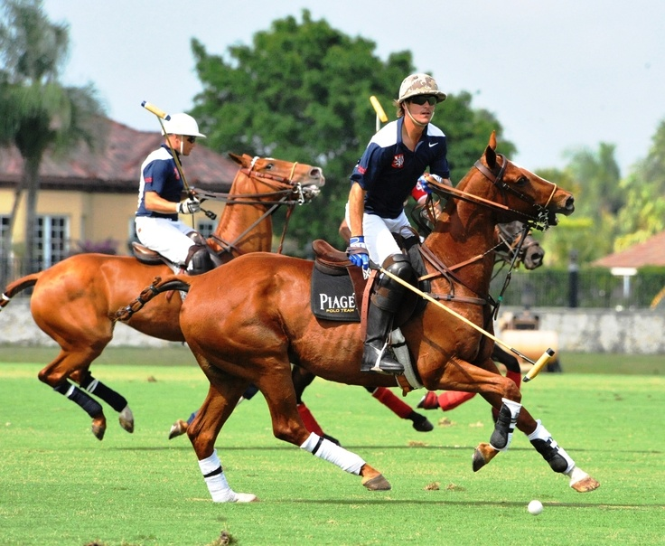 top polo player Nic Roldan to play in the 2nd Annual Scottsdale Polo Championships: Horses+Horsepower (Oct. 2012) get your tickets now at www.thepoloparty.com