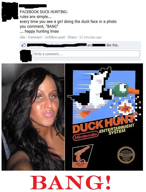 funny-Duck-Hunt-video-game-Facebook