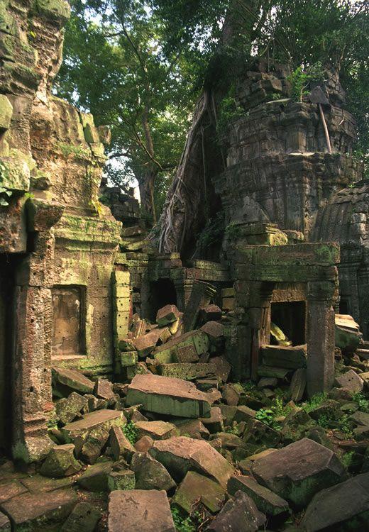 Jungle Ruins Angkor Wat Cambodia Angkor Angkor Wat